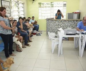 Projeto inclui vacinas polivalentes em programa de prevenção a doenças em animais domésticos
