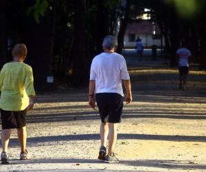 Projetos em tramitação concedem benefícios aos idosos de São José