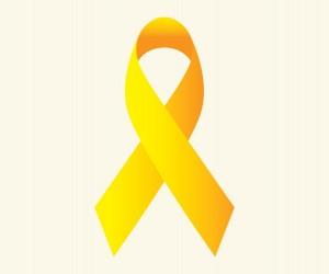 Palestras na Câmara nesta segunda (16) discutem prevenção ao suicídio