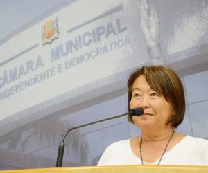Projeto Cultural Retrô Park pode ser incluído no Calendário Oficial de São José