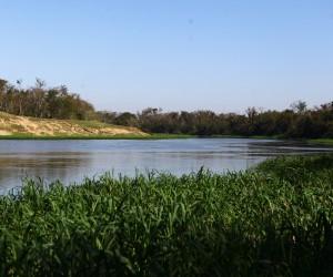 No Dia Mundial da Água, conheça leis e projetos para a preservação desse recurso natural