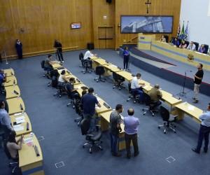 Câmara aprova mapeamento arbóreo em São José dos Campos